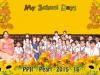 PP-II-Pearl
