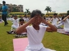 Yoga International Day (6)