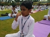 Yoga International Day (7)